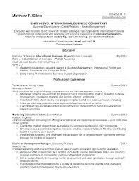 Business Objective For Resume Best of Objectives For Entry Level Resumes How To Write A Entry Level Resume