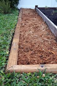 how to build a garden. How To Build A Timber Garden Border + Vegetable Tips From SewWoodsy.com # C