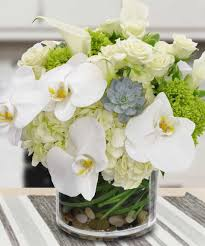 Small Picture Yonkers White Plains Florist Same day Delivery Blossom