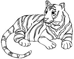 Small Picture Baby Tiger Coloring Coloring Pages