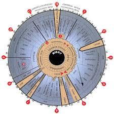 Iridology Chart How To Read The Iris Of An Eye Laminated
