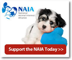 Ethical Issues Confront Purebred Rescue Groups | National Animal …