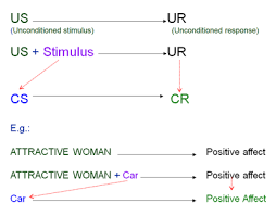 Example Of Classical Conditioning Learning And Memory Consumer Behavior