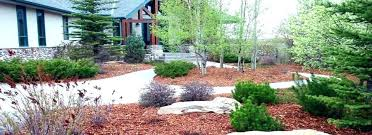 pine mulch home depot bark nugget slide image nuggets at the mob