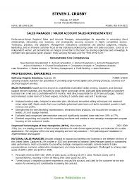 Trending Business Development Executive Resume Sample Business
