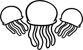 Small Picture Three Jellyfish Coloring Pages Animal Coloring pages of