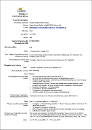curriculum vitae format r a samples examples format curriculum vitae format r a