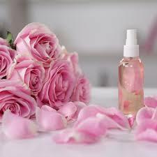 diy aloe rose toner