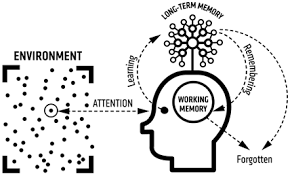 Cognitive Load Theory in action