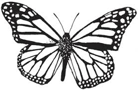 Small Picture Monarch Butterfly Coloring Page