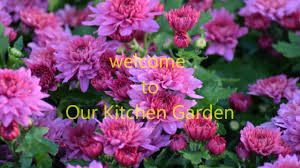Our Kitchen Garden Our Kitchen Garden Youtube