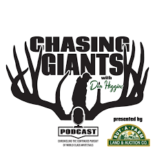 Chasing Giants with Don Higgins