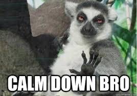 Calm down bro - Too High Lemur - quickmeme via Relatably.com