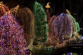 Lights At Lakemont Park Best Holiday Lights And Sights In Pennsylvania To Get You In