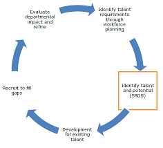 Succession Planning Chart Workforce And Succession Planning Jobs Recruitment
