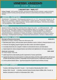 15 Best Resume Format 2015 Saint Connect