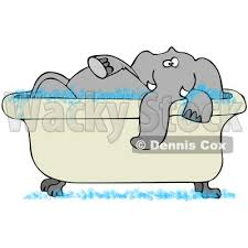 ilration of a tusked gray elephant taking a bubble bath in a