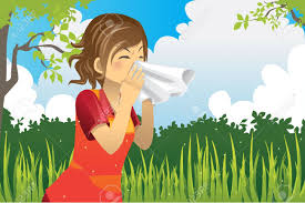 Image result for spring allergies