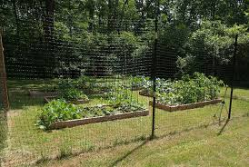 Small Picture Vegetable Garden Fence Design decorating clear