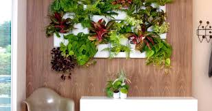 plant Beautiful Wall Planters Indoor Succulent Living Wall