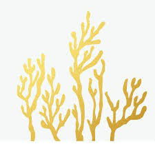 Coral Reef Wall Decals Coral Reef Wall Decal Home Design App Android ...