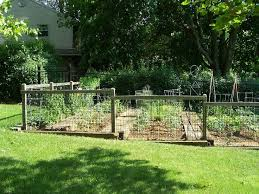 small garden fence fenced vegetable