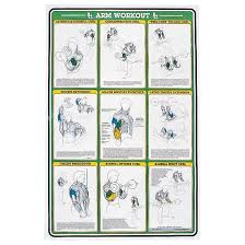 Self Instruction Weight Training Poster Arm Exercises