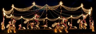 Lake Lanier Holiday Lights The Carousel At The Entrance To Lake Lanier Islands During