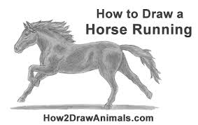 running horse drawing. Delighful Drawing How To Draw A Running Horse For Drawing W
