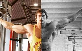 ryskin isn t shying away from the parisons either he ordered a gold s gym shirt just so he could recreate one of arnold s most iconic photographs