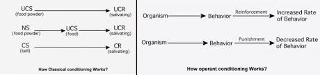 Classical Vs Operant Conditioning Psychestudy