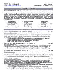 Information Technology Director Resume Account Executive Resume Is Like Your Weapon To Get The Job You 18