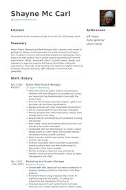 Senior Web Project Manager Resume samples