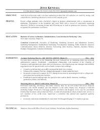 Marketing Profile Resume Samples Of Objectives On Resumes