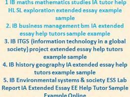 ib business management bm ia sample example extended