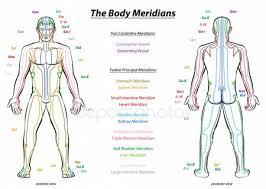 Meridians Stock Vectors Royalty Free Meridians