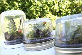 Recycled Jar Terrariums {Source: Our Big Earth}