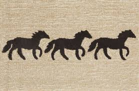 hadinger rugs naples fl best of stylish outdoor rugs for at hadinger area rug gallery