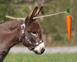 Image result for donkey and carrot story