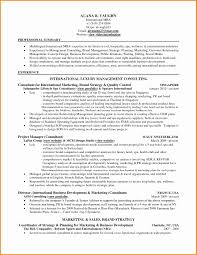 It Consulting Proposal Template Branding Proposal Example Lovely Free Consulting Proposal Template 5