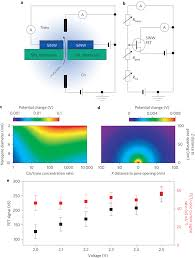 nanowire nanopore sensing mechanism a schematic of the sensing nanowire nanopore sensing mechanism a schematic of the sensing circuit b equivalent circuit diagram for a sinw silicon nanowire c