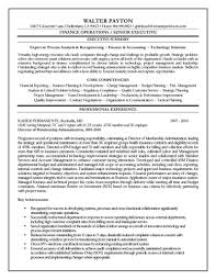 Resume Templates For Finance Professionals Free Resume Example
