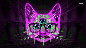 Hipster wallpaper, Hipster cat, Trippy cat