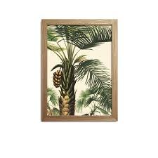 Affiche Botanique Palmiers Cadre La Nature S Invite Dans Votre