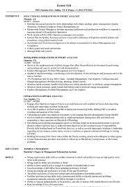 Operations Support Analyst Resume Samples Velvet Jobs
