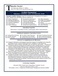 Tax Director Sample Resume Professional Writing Services It Examp