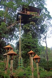 Hanging Tree House Eight Cool Treehouse Hotels Photos Condac Nast Traveler