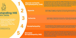 Nursing Care Plan For A Baby With Birth Asphyxia What Is Hypoxic Ischemic Encephalopathy Hie