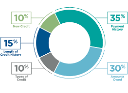 Credit Score Pie Chart The Making Of A Fico Credit Score