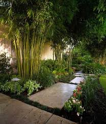 Small Picture Best Of Black Bamboo Garden Design Regarding Garden Decor Ideas